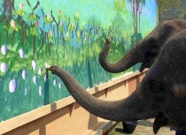 Elephants painting