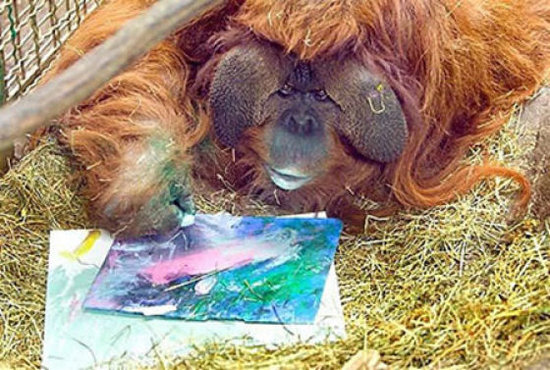 orang-painting - Oakland Zoo auctions art made by elephants, lemurs and other animals - Lifestyle, Culture and Arts