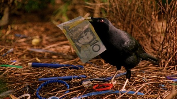 ten dollar note bower